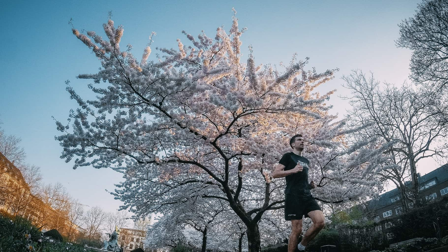 Rückblick zum ersten Frühlingswochenende